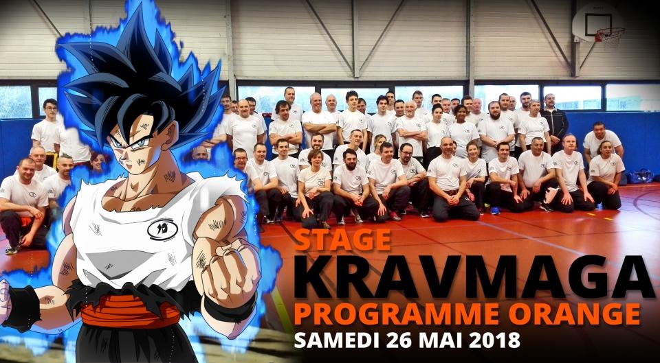Stage de Krav maga pour la préparation de la ceinture Orange