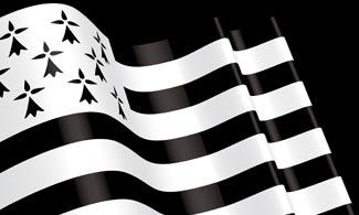drapeau breton kravmaga finsitere